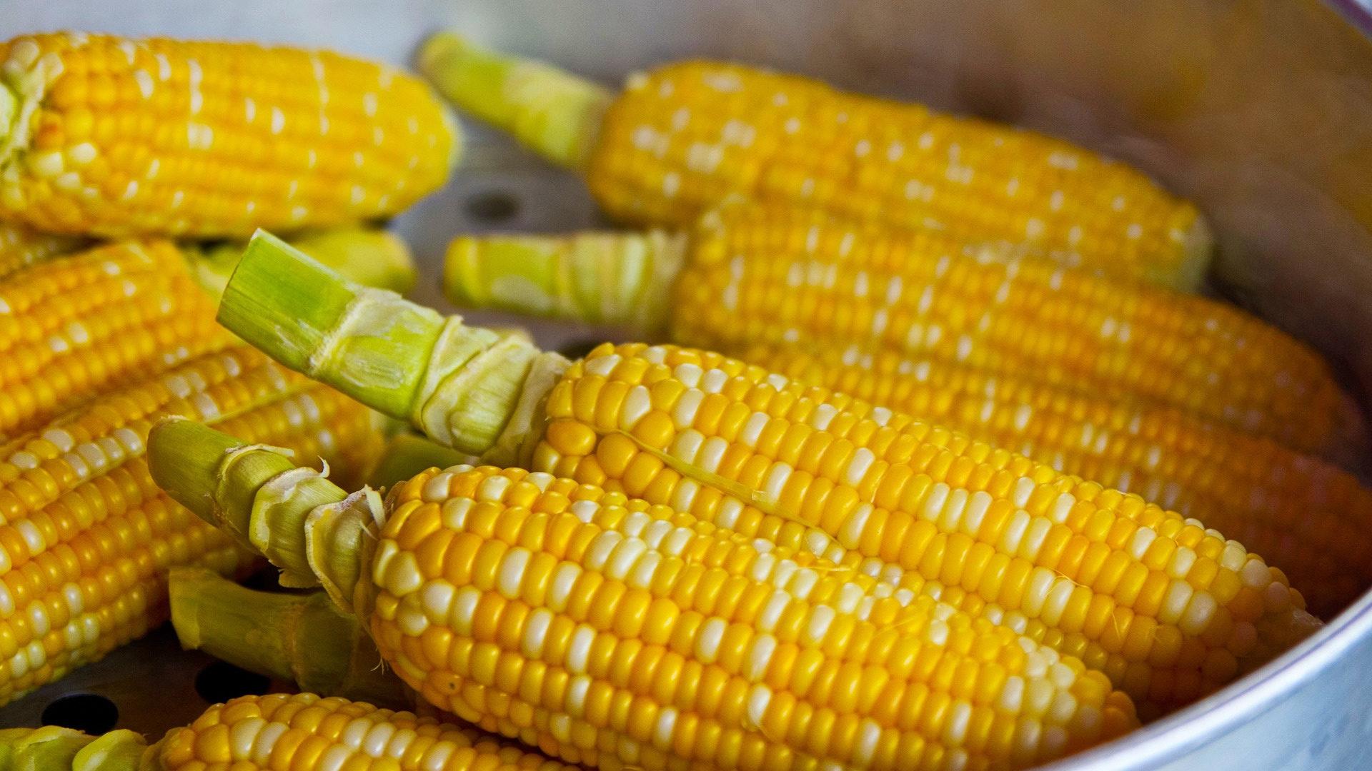 majs till popcorn